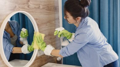 Photo of Housekeeping Services – Business Aspects and Value